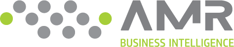 AMR Business Intelligence